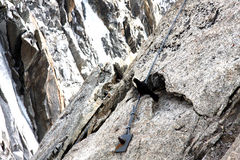 Ingluvia della carogna in alpi francesi Fotografia Stock