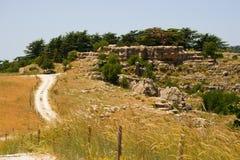 Ingång av cederträreserven, Tannourine, Libanon Arkivbilder