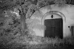 Ingången byggde i vinkällaren, Österrike Royaltyfri Bild