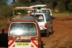 Ingorgo stradale di safari Fotografia Stock Libera da Diritti