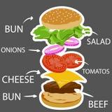 Ingrédient d'hamburger, aliments de préparation rapide Image stock