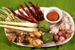 Ingrédient thaï d'herbe images stock