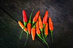 Ingrédient vert rouge de poivre de piment de vue supérieure pour la nourriture thaïlandaise de soupe épicée chaude à Tom Yum Chil Images stock