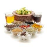 Ingrédients crus pour les conserves au vinaigre indiennes de mangue Photo stock
