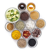 Ingrédients crus pour les conserves au vinaigre indiennes de mangue Images stock