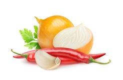 Ingrédients d'isolement de sauce à piment fort Images libres de droits