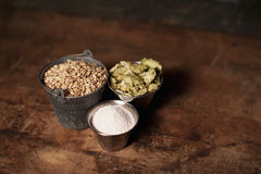Ingrédients de bière de métier Photographie stock