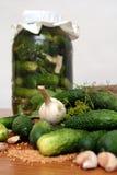 Ingrédients de conserves au vinaigre Photos libres de droits