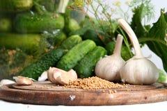 Ingrédients de conserves au vinaigre Photo stock