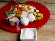 Ingrédients de la salade russe Images stock