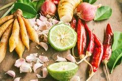 Ingrédients de nourriture épicée thaïlandaise, Tom yum Images stock