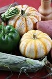 Ingrédients de nourriture d'automne Photos libres de droits