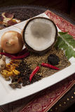 Ingrédients de nourriture indiens Photos libres de droits