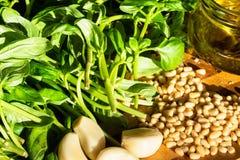 Ingrédients de pesto sur la table illuminée par le soleil photos stock