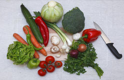 Ingrédients de salade Image stock