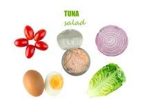 Ingrédients de salade de thon : laitue, tomates, oeuf, oignon et t en boîte Photographie stock libre de droits