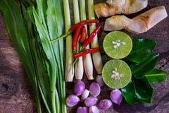 Ingrédients en gros plan Thaifood de tomyumkung Photos libres de droits