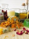 Ingrédients et ustensiles pour les cosmétiques faits maison Image stock