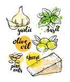 Ingrédients italiens pour le pesto photos libres de droits