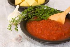 Ingrédients - jus de tomates Photographie stock libre de droits