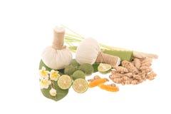 Ingrédients naturels de station thermale La boule de fines herbes de compresse et ingredien Photographie stock