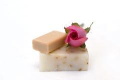 Ingrédients normaux de savon Photographie stock
