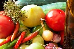 Ingrédients pour des conserves au vinaigre Photos stock
