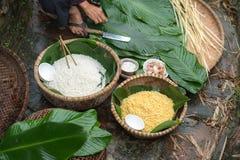 Ingrédients pour inciter Chung à durcir, la nourriture lunaire traditionnelle vietnamienne de nouvelle année Images stock