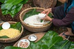 Ingrédients pour inciter Chung à durcir, la nourriture lunaire traditionnelle vietnamienne de nouvelle année Photos stock