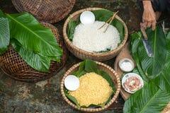 Ingrédients pour inciter Chung à durcir, la nourriture lunaire traditionnelle vietnamienne de nouvelle année Image stock