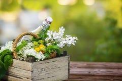 Ingrédients pour l'eau-de-vie fine d'herbe Photographie stock