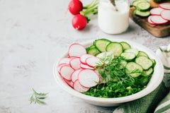 Ingrédients pour la salade d'été Tranches de radis et concombre, oignons verts et aneth Photos libres de droits