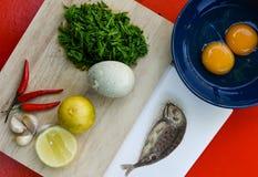 Ingrédients pour la sauce chili, menu épicé de nourriture thaïlandaise Photos stock