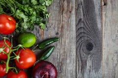 Ingrédients pour la sauce Pico de Gallo, fresca de Salsa photos stock