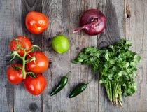 Ingrédients pour la sauce Pico de Gallo, fresca de Salsa photos libres de droits