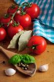 Ingrédients pour la sauce tomate Image libre de droits