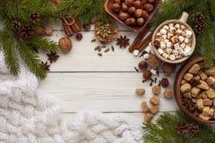 Ingrédients pour le chocolat chaud ou le café épicé photos stock