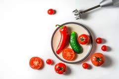 Ingrédients pour le gazpacho de potage aux légumes d'un plat et d'un a en céramique Image libre de droits