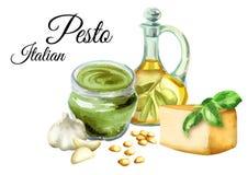 Ingrédients pour le pesto de sauce, sauce italienne populaire D'isolement sur le fond blanc Illustration d'aquarelle Photographie stock libre de droits