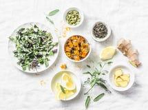 Ingrédients pour le thé antioxydant de detox de foie sur un fond clair, vue supérieure Herbes sèches, racines, fleurs pour la rec photographie stock libre de droits