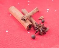 Ingrédients pour le vin chauffé Photographie stock libre de droits