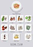 Ingrédients réglés de la salade de papaye Images stock