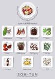 Ingrédients réglés de la salade de papaye Image libre de droits
