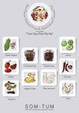 Ingrédients réglés de la salade de papaye Images libres de droits