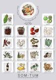Ingrédients réglés de la salade de papaye Photographie stock libre de droits