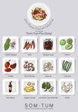 Ingrédients réglés de la salade de papaye Photo stock