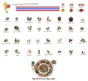 Ingrédients réglés de la salade de papaye Image stock