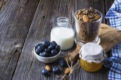 Ingrédients sains de petit déjeuner Céréale, muesli de chocolat, myrtilles fraîches Images libres de droits