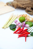 Ingrédients thaïlandais d'assaisonnement de nourriture de Tomyum sur le fond blanc Photographie stock libre de droits