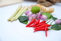 Ingrédients thaïlandais d'assaisonnement de nourriture de Tomyum sur le fond blanc Images libres de droits
